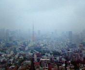 49階からの眺望