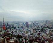 お台場も東京タワーも